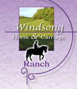 Windsong Horse and Carriage - Funeral Services
